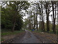 TM4476 : Footpath to the A12 & entrance to Henham Park by Adrian Cable