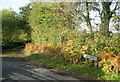TG1228 : Heydon Road junction with Spink's Lane, Oulton by Evelyn Simak