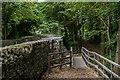 SH5271 : Footbridge near Lon Pwllfanogl by Ian Capper