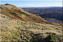 NY3004 : SW side of Lingmoor Fell by Ian Taylor