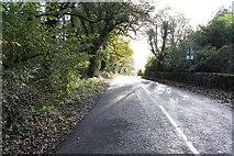 NX9257 : Road to Caulkerbush near Southwick Church by Billy McCrorie