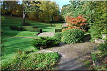 SX7962 : Looking towards the Tiltyard lawn by jeff collins