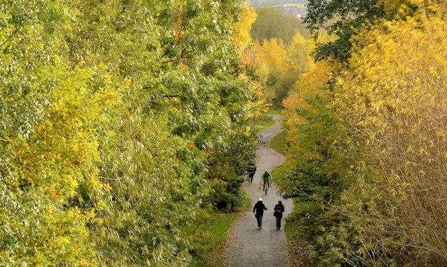 Autumn, Comber Greenway, Belfast (2013)