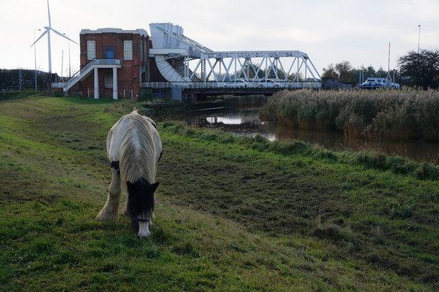 The riverside path near Sutton Road Bridge, Hull