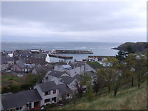 NO8785 : Stonehaven Harbour by JThomas