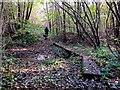 TQ6327 : Batt's Wood Close by Den's Bridge by Peter Skynner