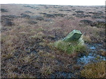 SD9834 : Boundary stone in a quagmire by John H Darch
