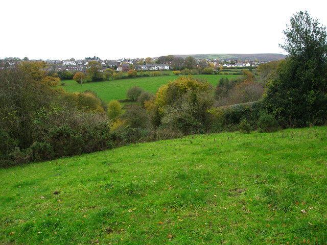 Grazing fields and woodland north of Coedpoeth
