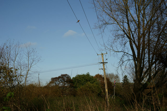 On the Telephone Wires