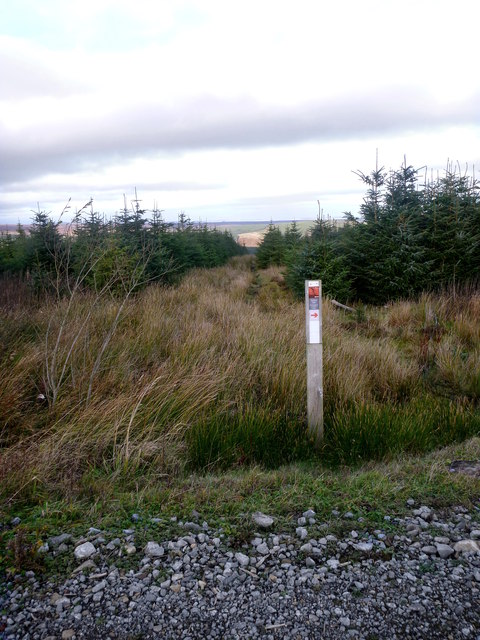 Bridleway about the least suitable bike route