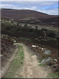 NO1795 : Hill track leading up between Carn Liath & Culardoch by Colin Park