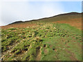 NY2122 : Grassy path climbing Sleet How by Graham Robson