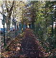 ST2787 : Path between two fences, Rogerstone by Jaggery