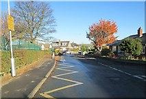 SE1421 : Ashlea Avenue - looking towards Daisy Road by Betty Longbottom