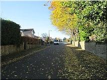 SE1421 : Toothill Avenue - looking towards Lyndhurst Avenue by Betty Longbottom