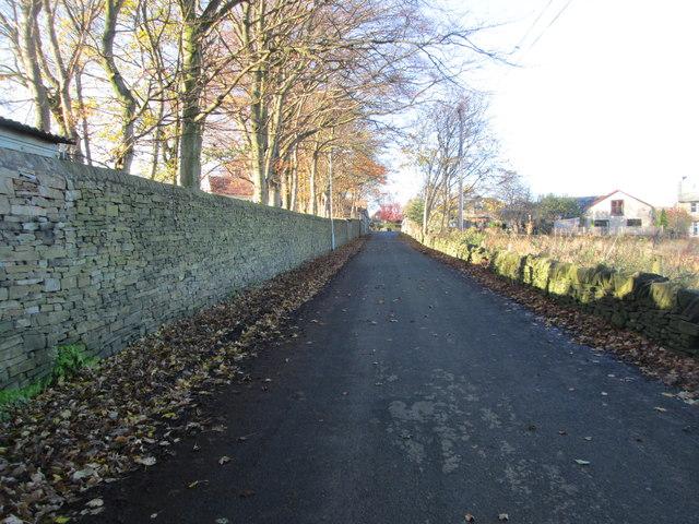 Shepherds Thorn Lane - looking towards Huddersfield Road