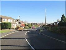 SE1421 : Lyndhurst Avenue - looking towards Lyndhurst Road by Betty Longbottom