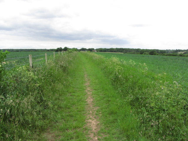 View NW along track towards Flounden End Farm near Botley