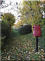 TM2560 : Footpath & Low Street Postbox by Adrian Cable