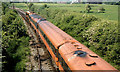 N2532 : Train, Clara (1982) by Albert Bridge