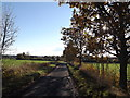 TM2461 : Mutton Lane, Brandeston by Adrian Cable