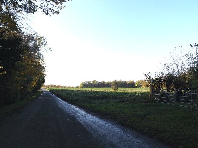 Old Maid's Lane, Brandeston