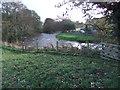 NY7708 : River Eden by David Brown