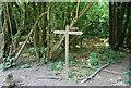 TQ3734 : Public footpath / bridleway junction by N Chadwick