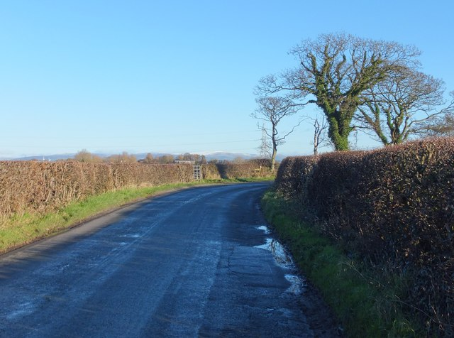 A bend in Whin Lane, east of Rose Farm