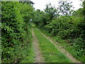 SO8164 : Track and Severn Way footpath by Mat Fascione