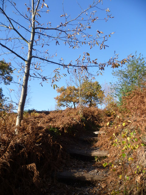 Steps on path up from Shottenden