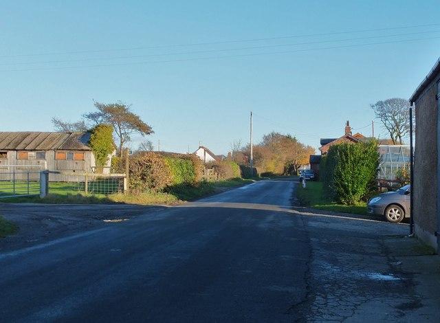 Whin Lane