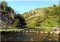 SK1551 : Dovedale Stepping Stones by Brian Frost