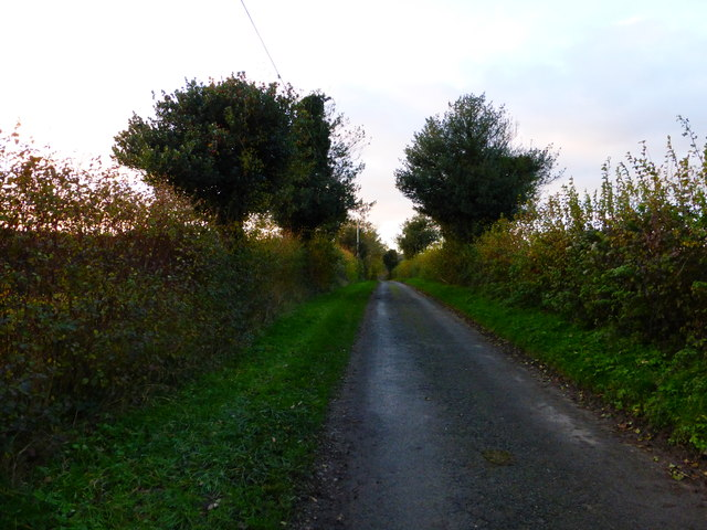 Lane west of Hylter's Lane looking west