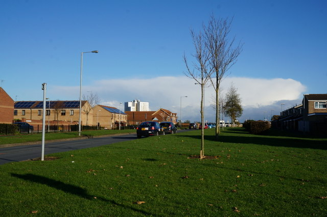 Honiton Road, Bransholme, Hull