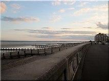 SZ9398 : The Esplanade, Bognor Regis by Tricia Neal