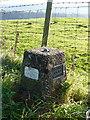 SO4692 : Church Stretton Fundamental Benchmark by Richard Law