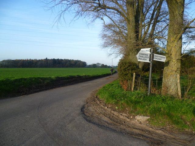 Lane near Shottenden