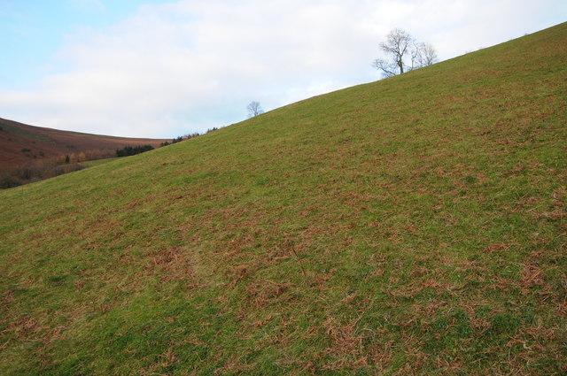 Hillside above Cwm Beusych