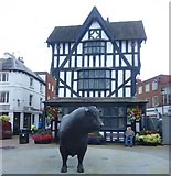 SO5140 : Hereford bull outside The Old House by Gordon Hatton