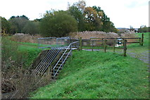 SX8672 : Whitelake outfall structure by jeff collins