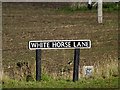 TG2305 : White Horse Lane sign by Adrian Cable