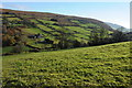 SO2919 : View to Bryn Arw by Philip Halling