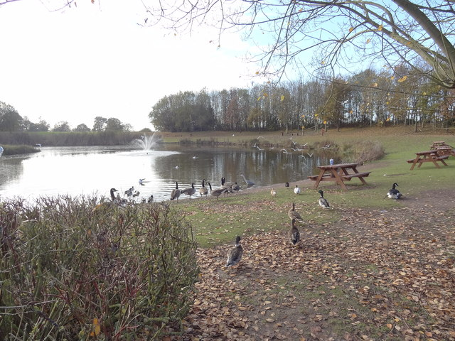 Picnic Tables by the Lake at Stafford Services