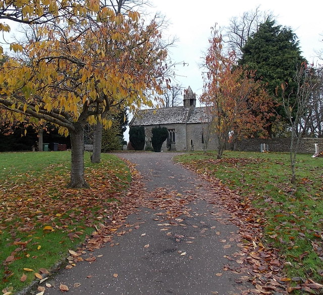 Autumn leaves on the path to St. Mary's church, Acton Turville