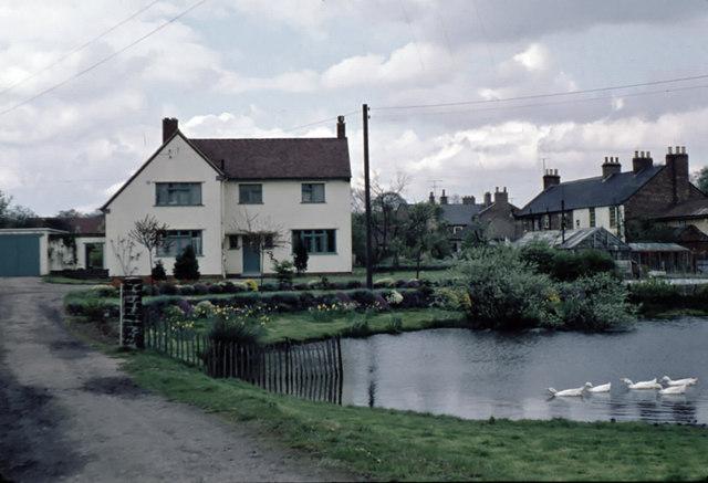 Wolviston pond in April 1959