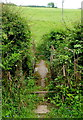 SO2440 : Footbridge over Dulas Brook near Brickyard Cottage by Jaggery