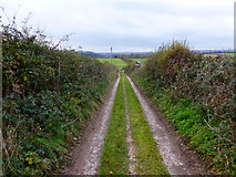 SU8413 : Track on Warren Down by Shazz