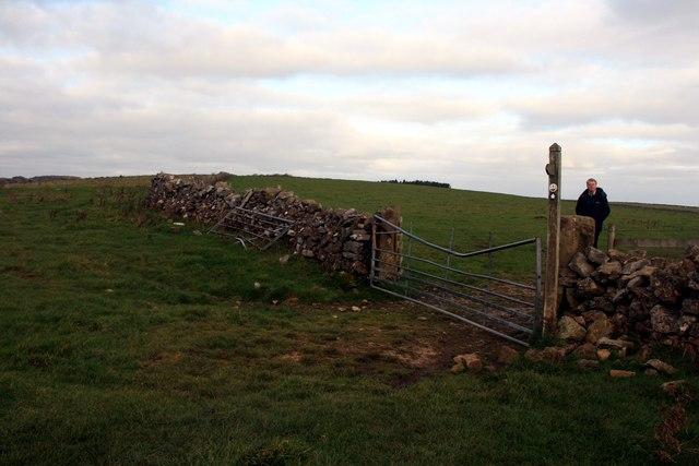 Damaged gate above Long Dale
