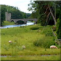 SO1919 : Glan Usk bridge and Tower Lodge in the Glanusk Estate NW of Crickhowell by Jaggery